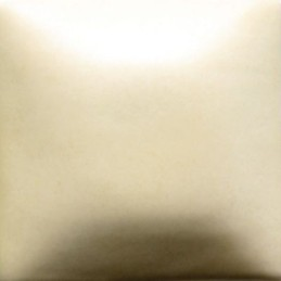 FN-302 Ivory Cream Matt