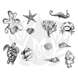 DSS-0102 Sea Life